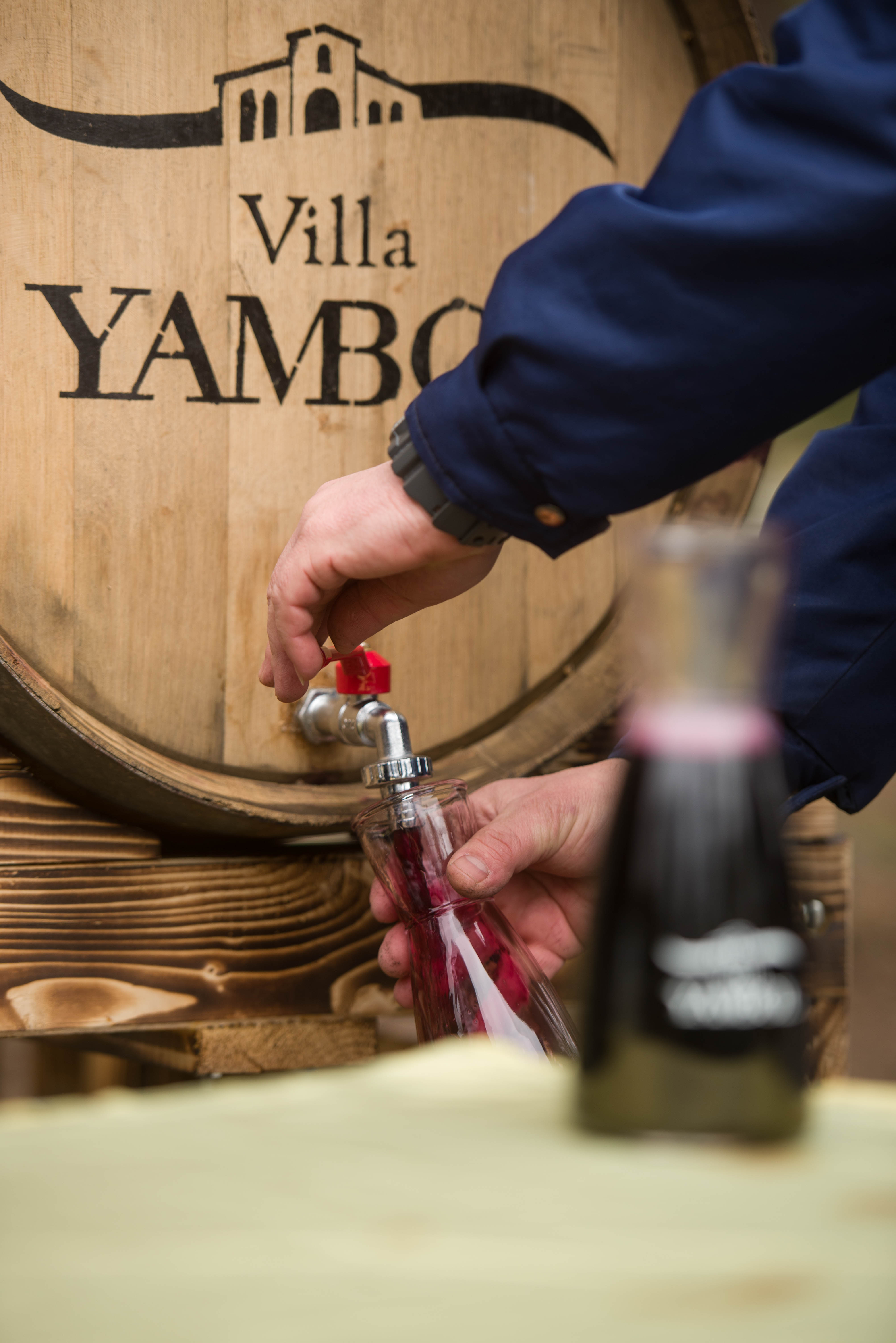 За втора поредна година ВИЛА ЯМБОЛ превърна професионалния си ден Трифон Зарезан в празник за жителите на град Ямбол